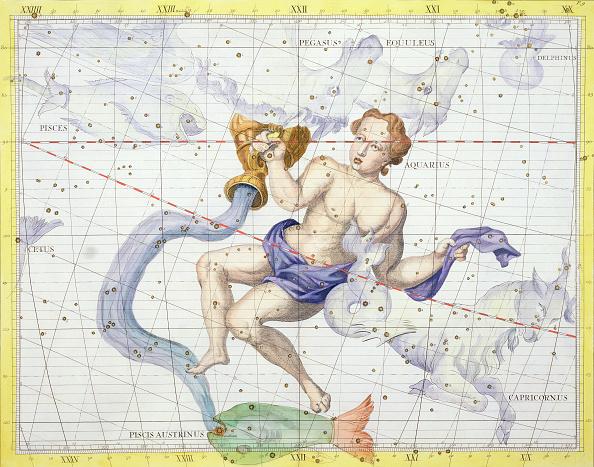 Sea Life「Constellation Of Aquarius 1729」:写真・画像(8)[壁紙.com]