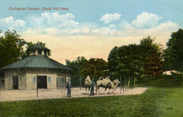 City Life「Baltimore: Druid Hill Park」:写真・画像(2)[壁紙.com]