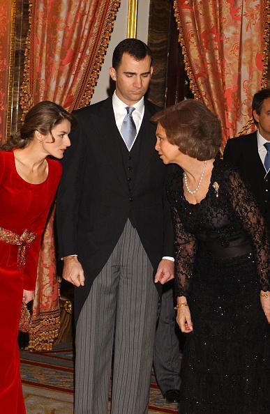 Carlos Alvarez「Spanish Royals Receive Foreign Ambassadors」:写真・画像(0)[壁紙.com]