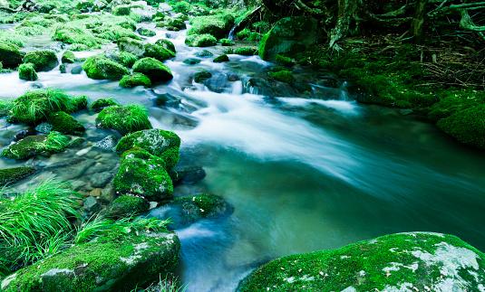 Ibaraki Prefecture「Mountain Stream Flow Through Moss Covered Rocks」:スマホ壁紙(13)