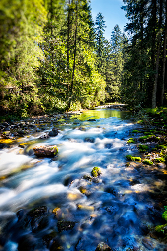 River「Mountain stream in the Koscieliska valley, Tatra Mountains, Poland」:スマホ壁紙(6)