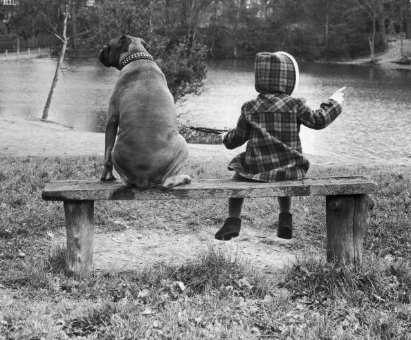 動物・ペット「Little Girl And Dog」:写真・画像(18)[壁紙.com]