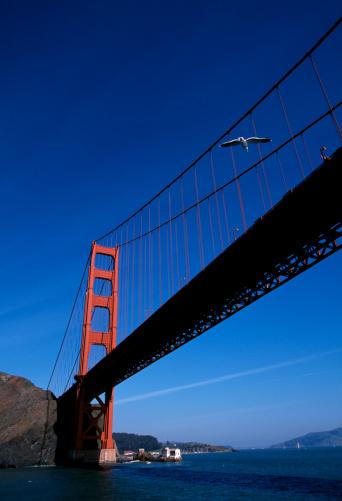 2002「Golden Gate Bridge」:スマホ壁紙(18)