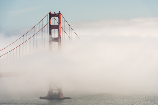 Aquatic Sport「Golden Gate bridge tower emerging from fog」:スマホ壁紙(19)