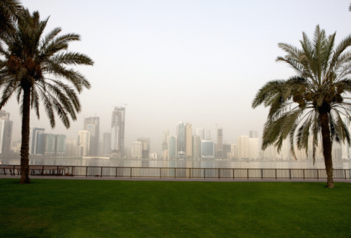 Palm tree「View east across Khalid Lagoon to the corniche, Sharjah, UAE」:スマホ壁紙(11)