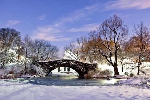 Central Park - Manhattan「Gapstow bridge」:スマホ壁紙(14)