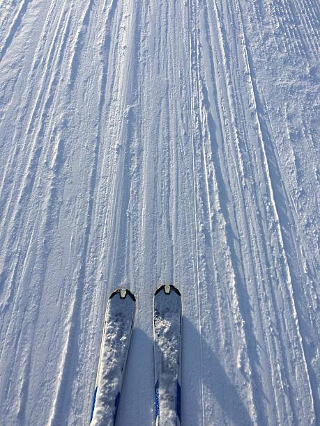 View of skis in snow:スマホ壁紙(壁紙.com)