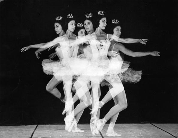 Motion「Margot Fonteyn」:写真・画像(12)[壁紙.com]