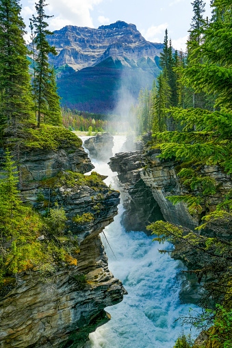 Athabasca River「Athabasca Falls Gorge, Jasper National Park, Canada」:スマホ壁紙(9)