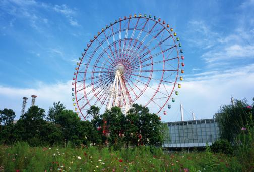 コスモス「Ferris Wheel, Daiba, Tokyo, Japan」:スマホ壁紙(5)