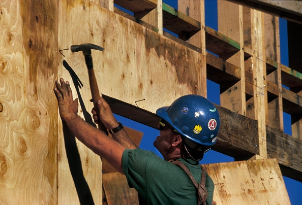 Plywood「Carpenter nailing plywood sheathing on wall for a community college in Nevada County, California, USA」:写真・画像(19)[壁紙.com]