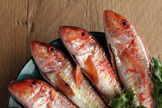Four red mullet fish on plate:スマホ壁紙(壁紙.com)