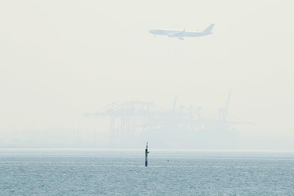 Land「Smoke Haze Blankets Sydney As Bushfires Continue To Burn Across NSW」:写真・画像(13)[壁紙.com]