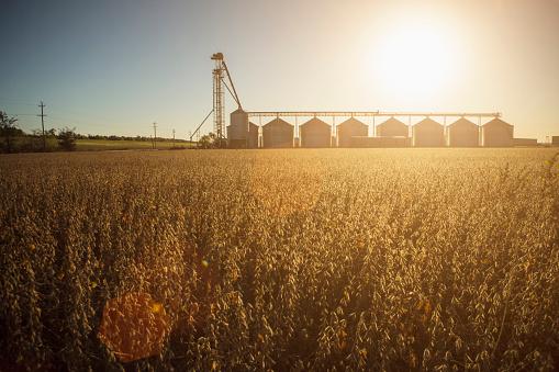 Missouri「Silos and crops in farm field」:スマホ壁紙(2)