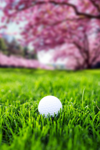 Cherry Blossoms「Golf in spring time」:スマホ壁紙(6)
