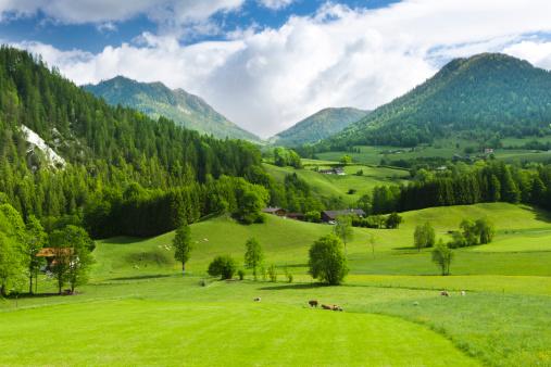 Valley「Green fields and mounatins」:スマホ壁紙(19)