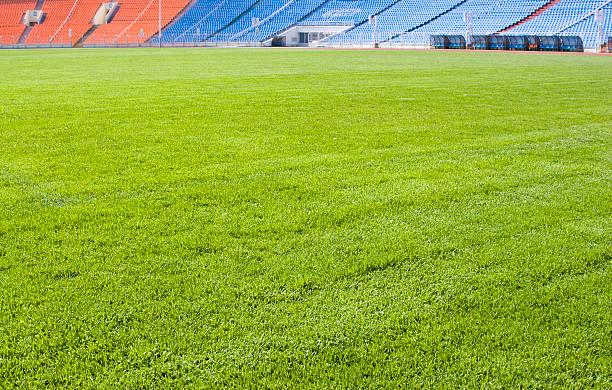 Green field for playing sports:スマホ壁紙(壁紙.com)