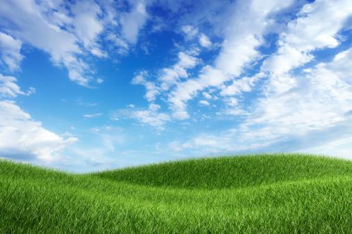 新鮮「青い空の下のグリーンフィールド」:スマホ壁紙(8)