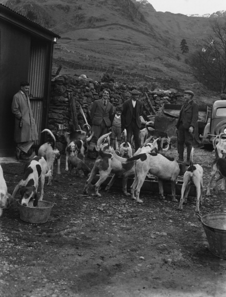 Trough「Men With Hunting Hounds」:写真・画像(3)[壁紙.com]