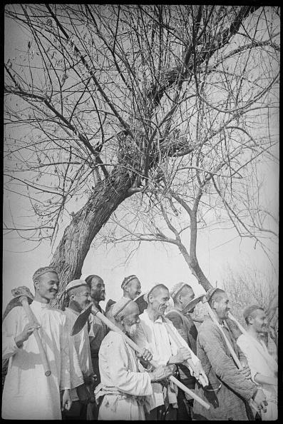 Samarkand「Ketmen Workers」:写真・画像(17)[壁紙.com]