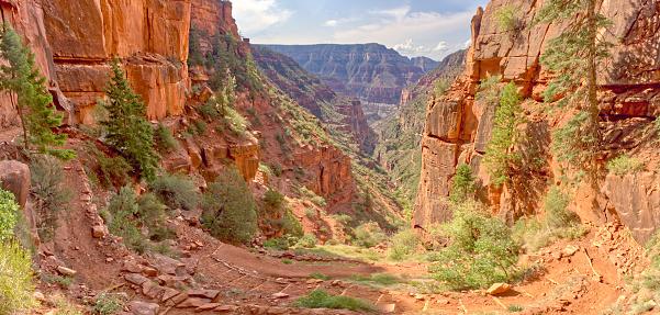 Kaibab National Forest「Bright Angel Canyon view from North Kaibab Trail, Kaibab National Forest, Grand Canyon, Arizona, USA」:スマホ壁紙(17)