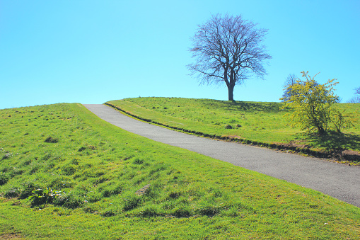 イギリス「Blue sky and green grass view」:スマホ壁紙(3)