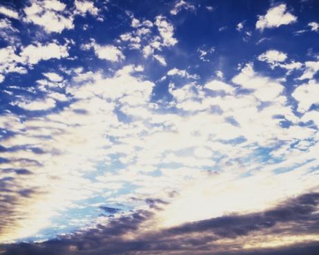 巻積雲「Blue sky and Clouds(Mackerel sky), Low angle view, Full frame」:スマホ壁紙(3)