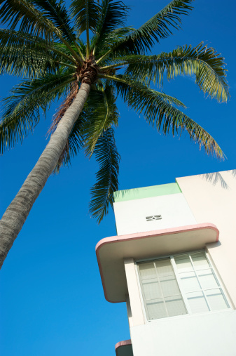 Miami Beach「アールデコ様式の建物マイアミビーチのブルースカイパームトリー」:スマホ壁紙(8)
