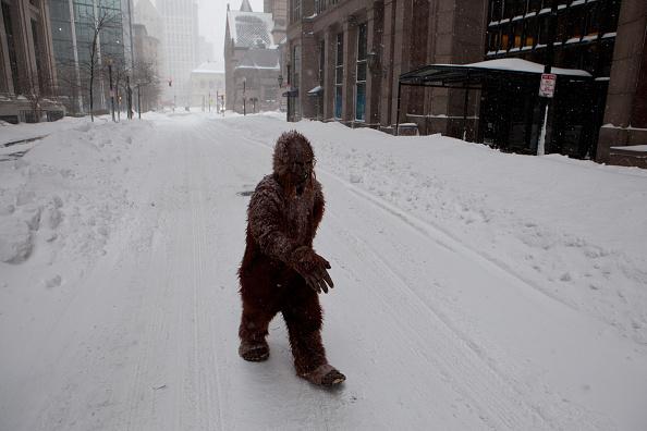 Monster - Fictional Character「Blizzard Barrels Into Northeastern U.S.」:写真・画像(10)[壁紙.com]
