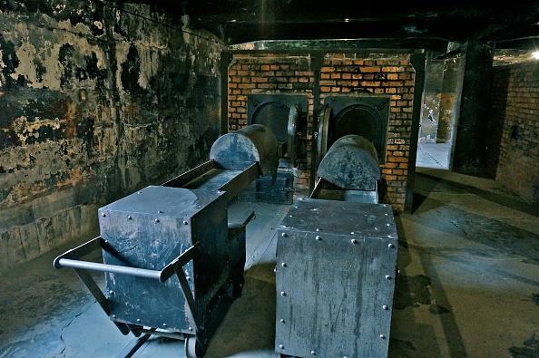 Oven「Crematorium At Auschwitz I」:写真・画像(2)[壁紙.com]