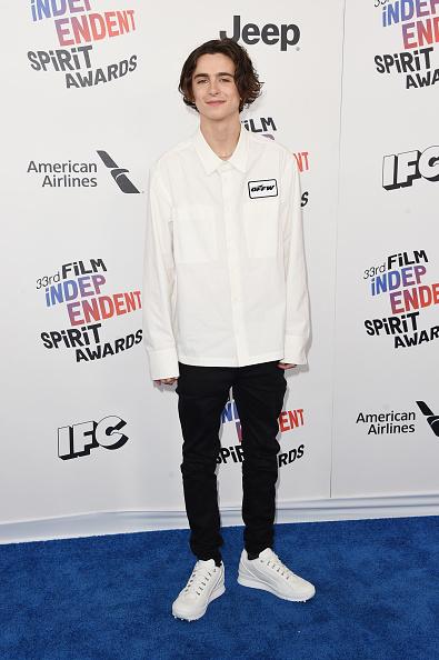 Jason Merritt「2018 Film Independent Spirit Awards  - Arrivals」:写真・画像(0)[壁紙.com]