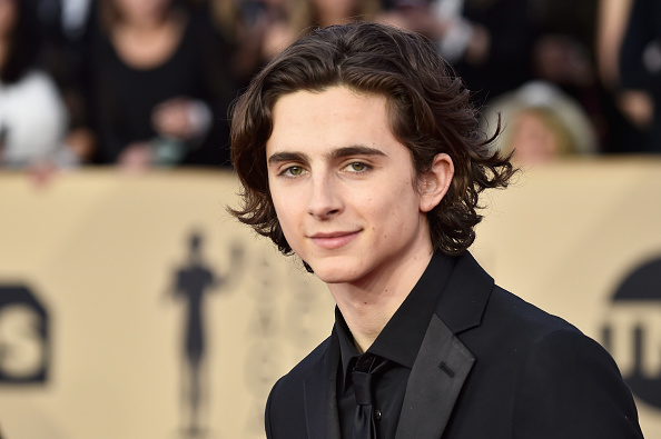 Timothée Chalamet「24th Annual Screen Actors Guild Awards - Arrivals」:写真・画像(1)[壁紙.com]