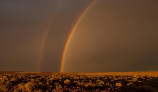 Double Rainbow「rainbow」:スマホ壁紙(9)