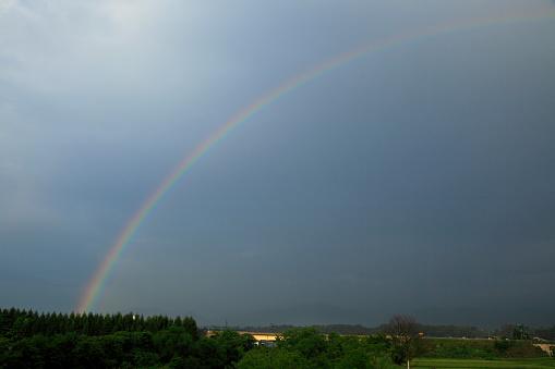 虹「Rainbow」:スマホ壁紙(10)