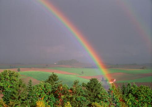 虹「Rainbow」:スマホ壁紙(17)