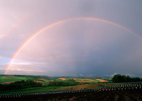 虹「Rainbow」:スマホ壁紙(12)