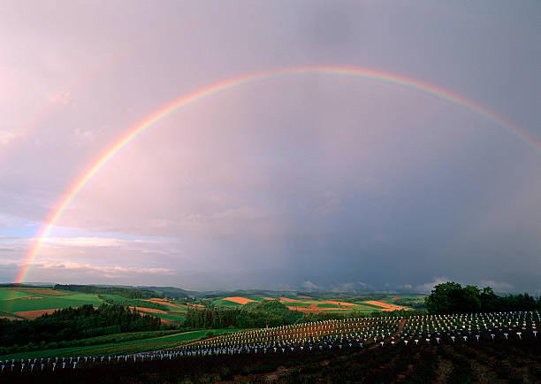 Rainbow:スマホ壁紙(壁紙.com)