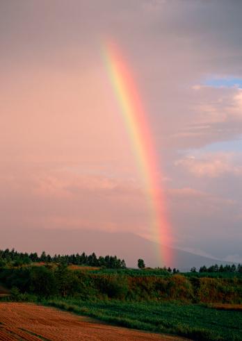 虹「Rainbow」:スマホ壁紙(15)