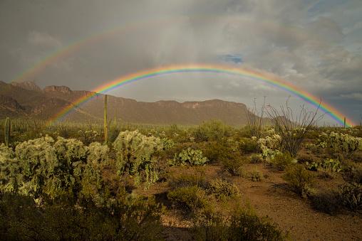 Double Rainbow「Rainbow」:スマホ壁紙(19)