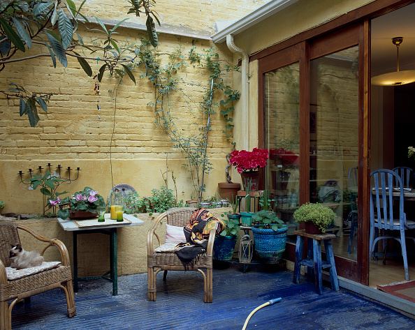 Grounds「View of a patio decorated with plants」:写真・画像(15)[壁紙.com]