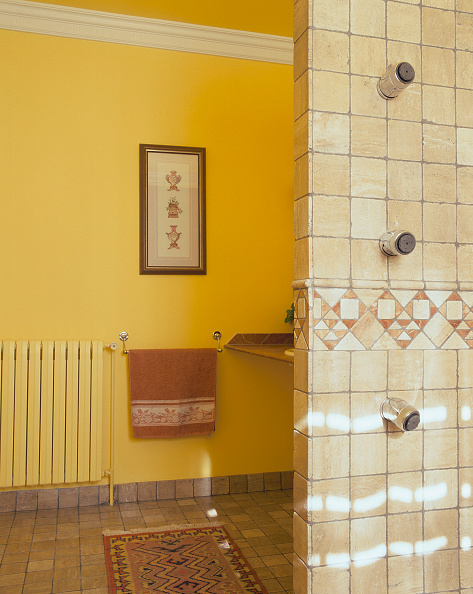 Rug「View of a painting in a bathroom」:写真・画像(5)[壁紙.com]