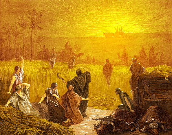 Agricultural Activity「Return of the Ark to Beth Shemesh, by Doré - Bible」:写真・画像(14)[壁紙.com]