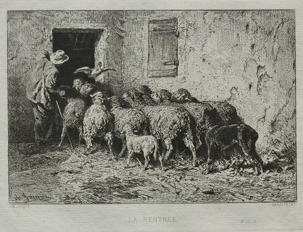 Etching「The Return. Creator: Charles-Émile Jacque (French」:写真・画像(14)[壁紙.com]