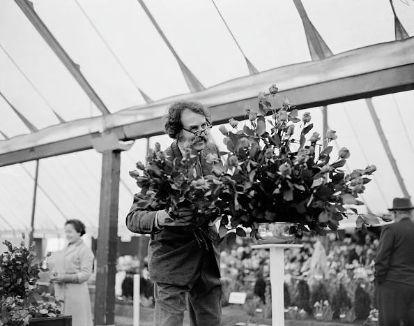 Greenhouse「Wheatcroft At Chelsea」:写真・画像(15)[壁紙.com]