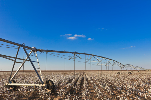 Southern USA「pivot circle irrigation equipment in cotton field」:スマホ壁紙(3)