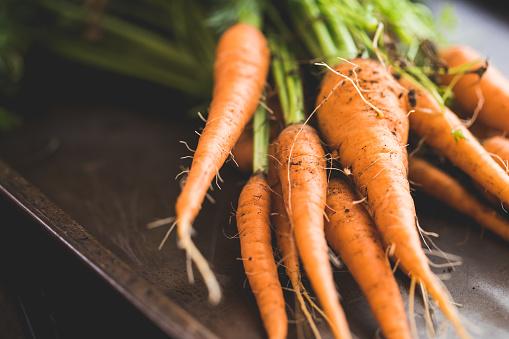 Crop - Plant「Bunch Of Homegrown Organic Carrots」:スマホ壁紙(4)