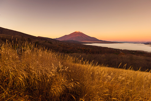 Satoyama - Scenery「Mt. Fuji」:スマホ壁紙(4)