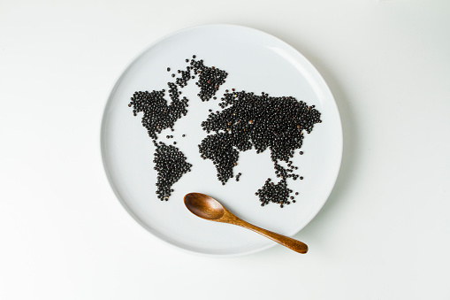 Silverware「Beluga lentils on plate shaped like a world map with wooden spoon」:スマホ壁紙(1)