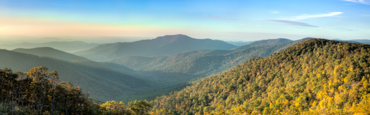 Old Growth Forest「Blue Ridge Mountains in Early Morning Panorama」:スマホ壁紙(3)