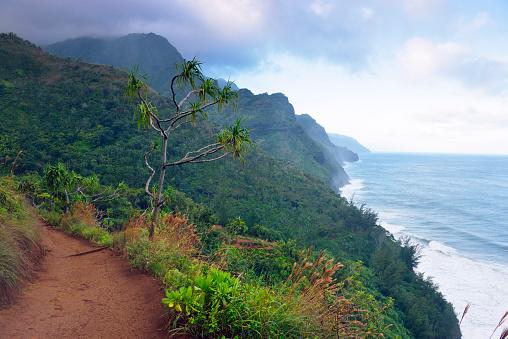 Pacific Coast「USA, Hawaii, Hanalei, View to Na Pali Coast, Na Pali Coast State Wilderness Park」:スマホ壁紙(14)